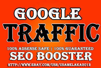 1000+ Website Traffic from google