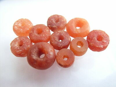10 Ancient Neolithic Carnelian Beads, Stone Age, VERY RARE!  TOP !!