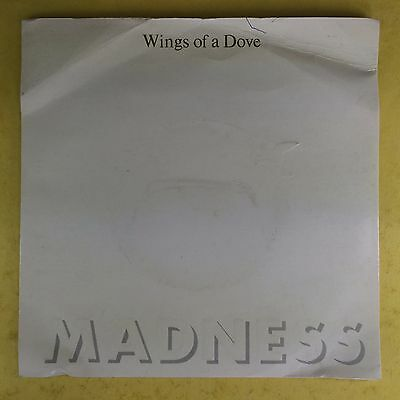 Madness - wings of a Dove / hinter den 8 ball - Stiff records BUY-181 Ex