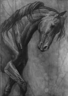 Horse original painting drawing black dark horse equestrian dressage signed