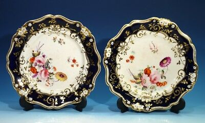 Beautiful Pair of 19th Century Antique Handpainted Floral & Gilt China Plates.
