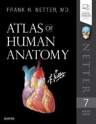 Atlas of Human Anatomy 7th Edition by Netter Paperback Book Free Shipping!