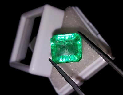 Details zu  Square Shape 5.43  Ct Certified Emerald Beryl