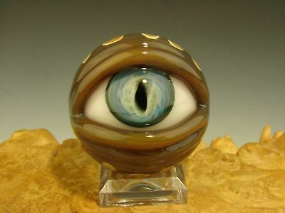 Glass Amphibian Eye Marble Eyeball Oddity Collectible Art Lampwork Freaky KT VGW