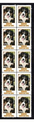 Bernese Mountain Dog Strip Of 10 Mint Stamps #1