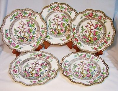 !$ Best Price $! COALPORT ' Indian Tree Multicolor Scalloped ' 5 SALAD PLATES