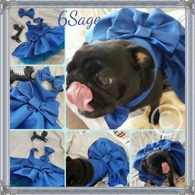 Hand made Couture Dog dress in silk taffeta huge tutu and full skirt.