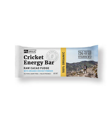 Organic Cricket Energy Bar - Raw Cacao Fudge | 12 Pack