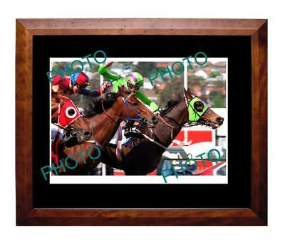 Solvit 1994 Cox Plate Win Large A3 Photo