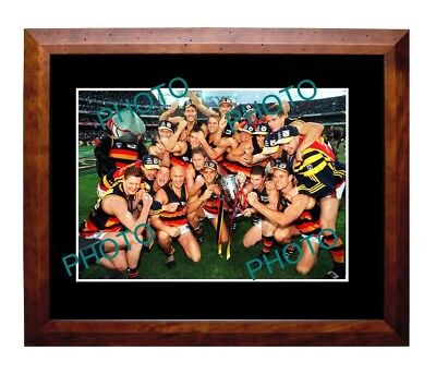 Adelaide Crows 1997 Premiership Win Large A3 Photo