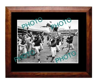 Essendon Fc 1984 Vfl Grand Final Win Large A3 Photo