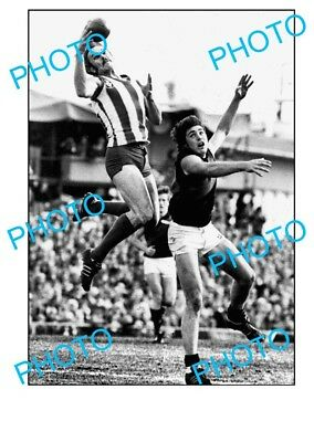 Malcolm Blight North Melbourne Fc Legend A3 Photo 2