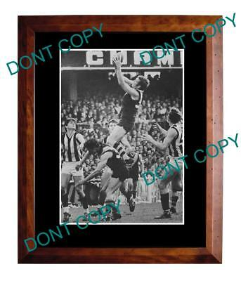 Mike Green 1969 Richmond Fc Great Large A3 Specky Print