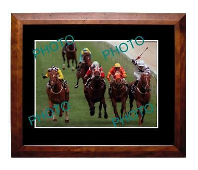 Saintly 1996 Cox Plate Win Large A3 Photo