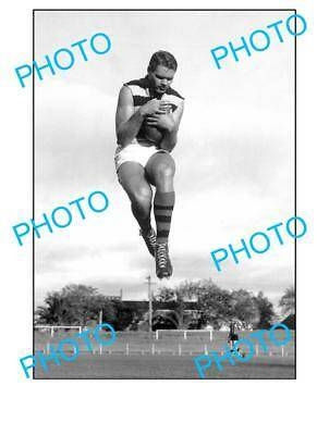 Polly Farmer Geelong Fc Chapion Large A3 Photo 1