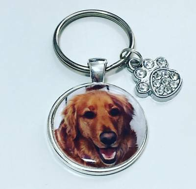 PET photo keyring personalised pet lover gifts  Dog keyring Cat keyring pet gift
