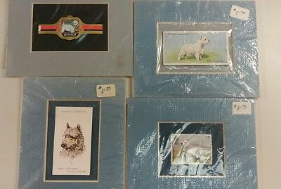 Four West Highland Terrier framed memorabilia. Cigarette Playing cards + 2 more