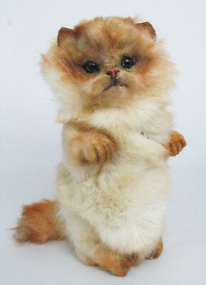 "Artist Signed Mary Wimberley 9"" 2004 Plush Fur Jointed Orange Persian Cat Doll"