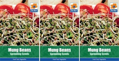 3 PACKETS of MUNG BEAN Sprouting VEGETABLE Garden SEEDS
