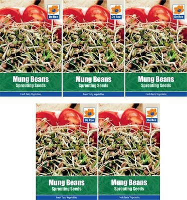 5 PACKETS of MUNG BEAN Sprouting VEGETABLE Garden SEEDS