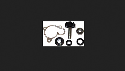 Kit Revisione Pompa Acqua Malaguti Madison 250 S 99-01 Mot. Yamaha