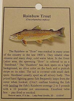 Rainbow Trout  Fish Hat Pin Lapel Pins Free Shipping