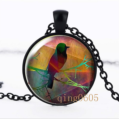 Robin on branch photo Glass Dome black Chain Pendant Necklace wholesale