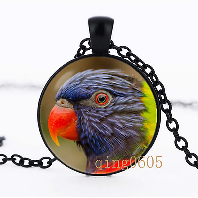 bright bird Parrot photo Glass Dome black Chain Pendant Necklace wholesale