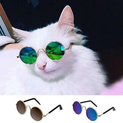 Pet Sunglasses Black Green Cat Glasses Summer Wear Fashion Grooming Accessories