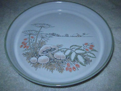 DENBY SEASONS ' WINTER' pie  / QUICHE DISH / SERVING BOWL - COLOROLL