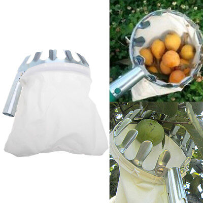 Practical Outdoor Horticultural Fruit Picker Gardening Pear Picking Convenient
