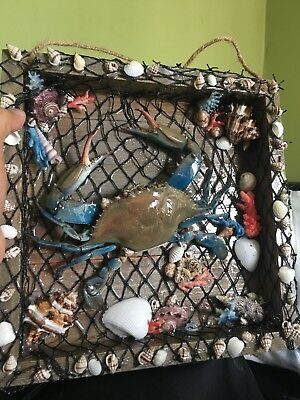Real blue crab taxidermy gift item CRAB IN THE FRAME