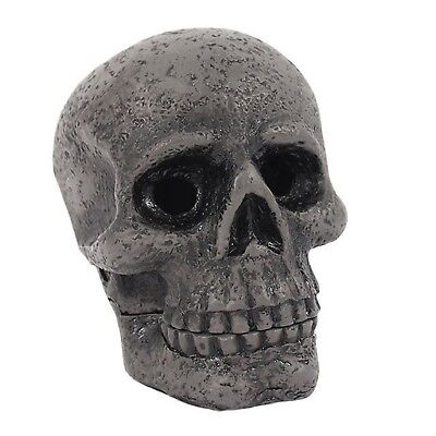 Cabinet Of Curiosities Skull Incense Holder Brand New Novelty Gift Fragrance