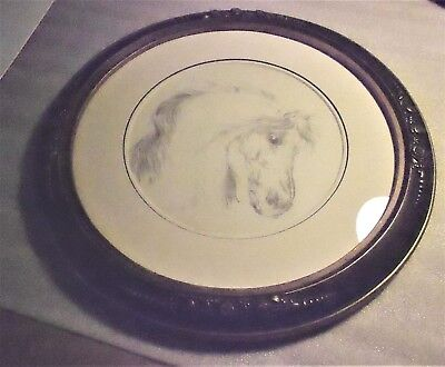 "Original Pencil Drawing of Horse's Head ""Apollo"" In Vintage Round Frame"