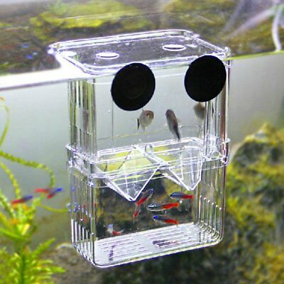 Fish Breeding Net Boxes Isolation Aquarium Accessories Incubator Box Tank