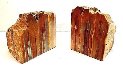 """Pair Of Cut And Polished Petrified Wood Bookends 5.5"""" Tall"""