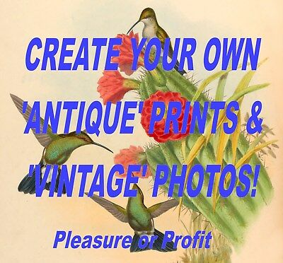 CREATE 'VINTAGE' PRINTS AND PHOTOS – 'How-To' Guide PLUS Images - Disc/Download