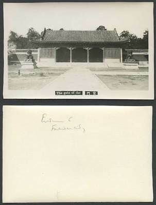 China Old Real Photo Card The Gate of The Summer Palace Peking Lion Statues R.P.
