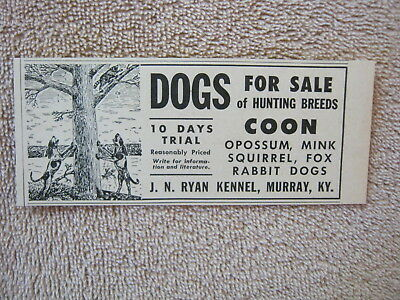 Vintage 1947 J. N. Ryan Kennel Coon Rabbit Fox Hunting Dogs Murray KY Print Ad