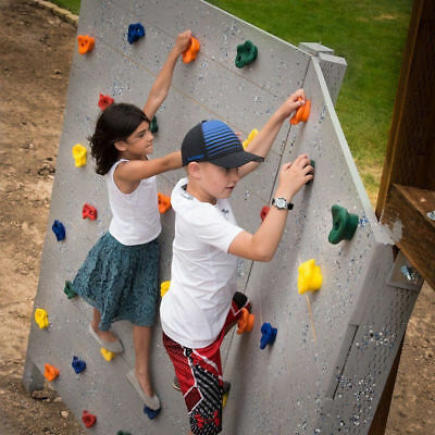 Kids Rock Wall Climbing Hand Holds Set Outdoor Playground with Screw Sports
