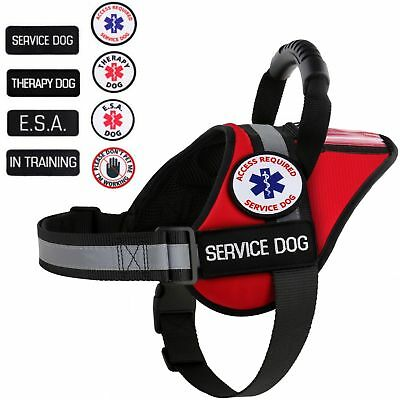 Service Dog - Therapy Dog - ESA Dog - Vest Patches K9 Harness ALL ACCESS CANINE™