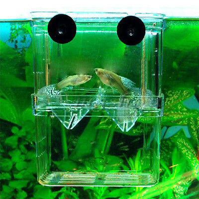 Fish Tank Aquarium Guppy Breeding Breeder Fish Baby  Isolation Hatchery 2 Layer