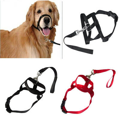 Dog Mouth Muzzle Adjustable Head Collar Walk Training Loop Stop Pulling Halter