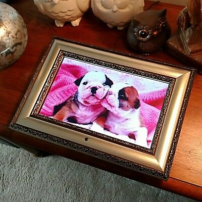 """ADS 11"""" Digital Photo Picture Frame w/ Remote Plays Movies Music Beautiful READ"""