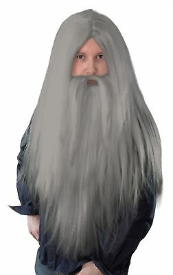 Gandalf Wizard Dumbledore Merlin Fancy Dress Costume Grey Long Wig and Beard Set