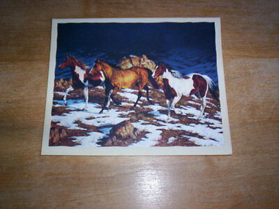 16 Wild Horse Horses  Blank Note Cards  APPROACHING STORM by Chris Cummings  NIB