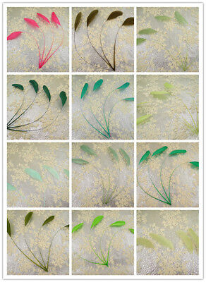 """69 Colours 5/7"""" Stripped Coque Feather Millinery & Craft Fascinators Hat Feather"""