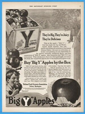 1918 Yakima Fruit Growers Assoc WA BIG Y Apples By The Box Vintage Print Ad