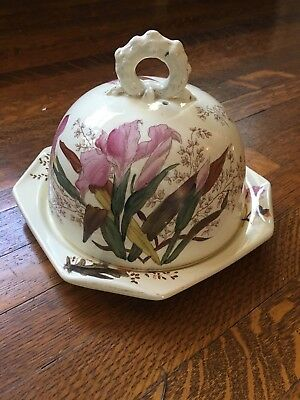 Antique Victorian Polychrome Cheese Dome W/iris Flowers Motif Pink Green Wb