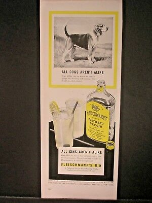 Vintage 1941 Fleischmann's Gin Ad...All Dogs Aren't Alike.